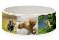 Печать на миске для кошек и собак